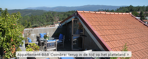 Appartement-B&B Coimbra