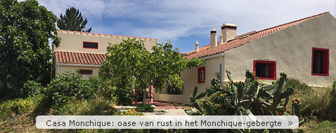 Casa Monchique, bed and breakfast